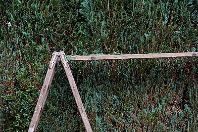 Beschnitt - p1164m956367 von Uwe Schinkel