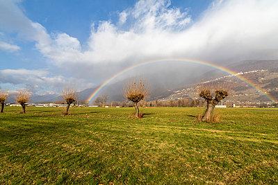 Rainbow on bare trees, Cosio Valtellino, Sondrio province, Valtellina, Lombardy, Italy, Europe - p871m1533907 by Roberto Moiola