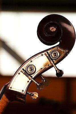 Kopfplatte eines Bass - p979m1036112 von Kosa, Martin