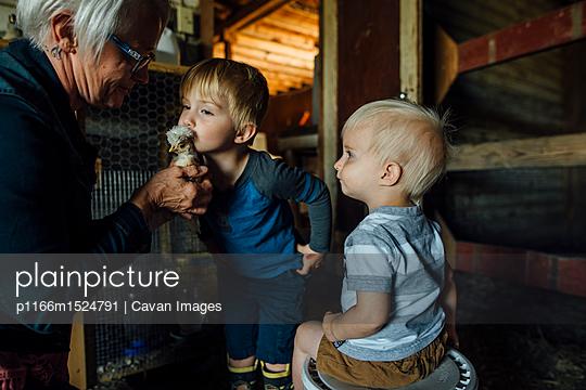 p1166m1524791 von Cavan Images