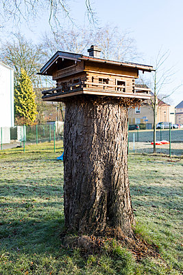 aviary - p1043m2059746 by Ralf Grossek