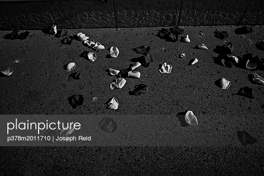 p378m2011710 von Joseph Reid