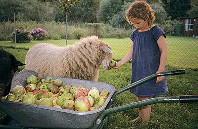 Fruit crops - p0030409 by Carolin