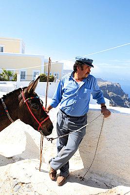 Man and his donkey - p0452254 by Jasmin Sander