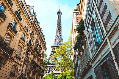 France, Paris, Eiffel Tower among buildings - p300m1153491 by Gemma Ferrando