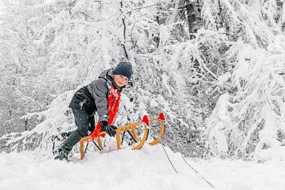 boy sledding in a snowy forest, Olpe, Germany - p300m2257011 von Oxana Guryanova
