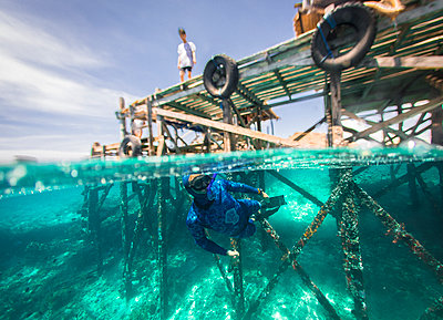 Freediver underwater, Komodo, Nusa Tenggara Timur, Indonesia - p343m2032304 by Evgeny Vasenev