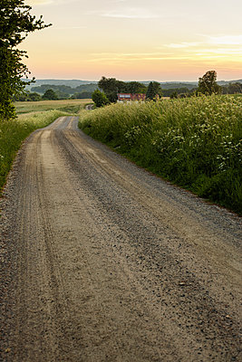 Sweden, Skane, Slimminge, Stenberget, country road in sunset - p352m1349310 by Gustaf Emanuelsson