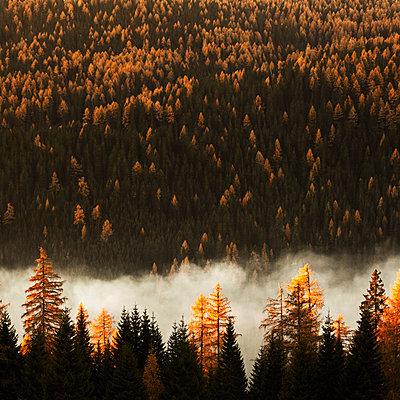 Tamsweg, Österreich - p844m1200034 von Markus Renner
