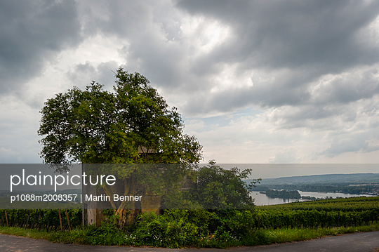 Baum vor Bunker - p1088m2008357 von Martin Benner