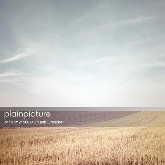 Fécamp - p1137m2150674 by Yann Grancher