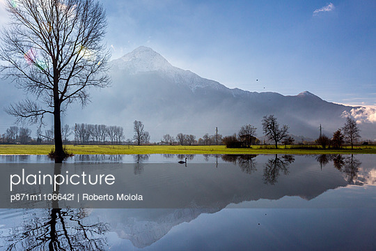 Natural reserve of Pian di Spagna  flooded with Mount Legnone and trees reflected in the water, Valtellina, Lombardy, Italy, Europe - p871m1106642f by Roberto Moiola
