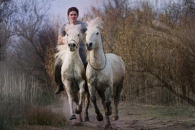 Wild horseback ride - p1041m1042372 by Franckaparis