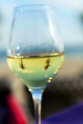 Glass of wine in France - p1041m777268 by Franckaparis