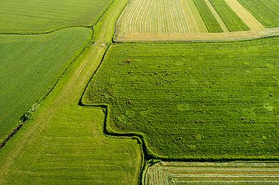 Netherlands, Fields - p1132m2196965 by Mischa Keijser