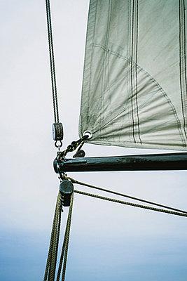 Sailing - p989m953137 by Gine Seitz