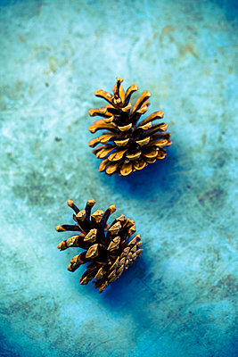 Two fir cones - p318m2087141 by Christoph Eberle
