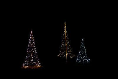 Electric Christmas trees - p533m1104412 by Böhm Monika