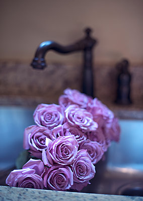 Purple Roses in a Rustic Sink - p1617m2200379 by Barb McKinney