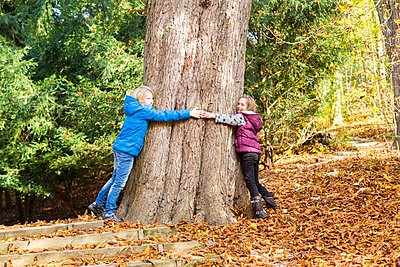 Two children hugging tree in autumn - p300m1205013 by Sandra Roesch