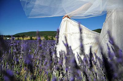 Braut im Lavendelfeld - p1468m1527649 von Philippe Leroux