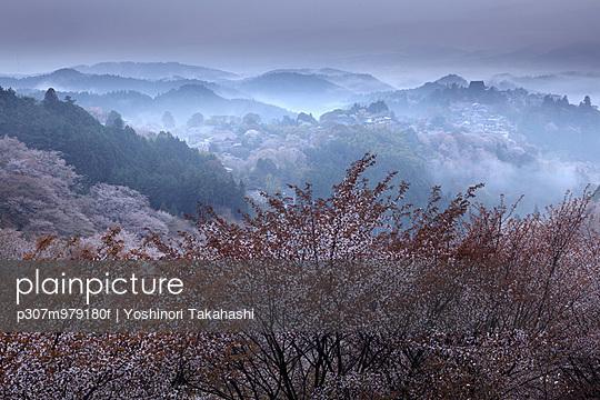Nara Prefecture, Japan - p307m979180f by Yoshinori Takahashi