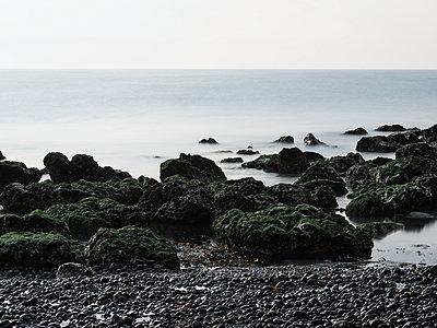 Moosbewachsene Steine an der Küste - p1383m2026520 von Wolfgang Steiner