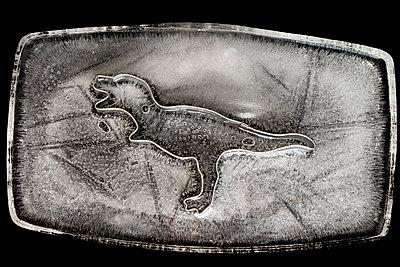 Eingefrorener Dinosaurier - p451m1538115 von Anja Weber-Decker