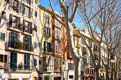 Row of houses Paseo del Borne - p885m1424895 by Oliver Brenneisen