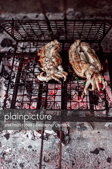 Grilled cuttlefisch - p947m2119508 by Cristopher Civitillo