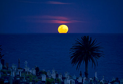 Supermoon rising over graveyard - p1125m1203685 by jonlove