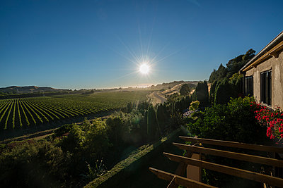 Winery at sunset - p1154m1425734 by Tom Hogan