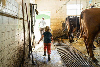 Daughter with mother leaving cow stable - p300m2114207 by Francesco Buttitta