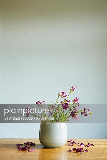 Bouquet of tulips - p1312m2103829 by Axel Killian