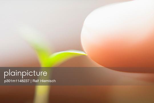 p301m1148237 von Ralf Hiemisch
