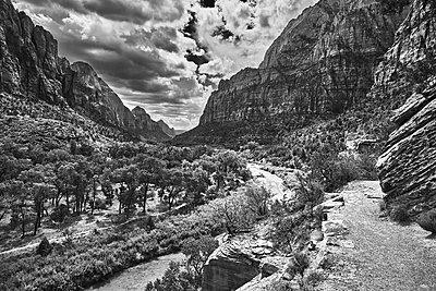 Canyon, Springdale, Zion National Park, USA - p1686m2288545 by Marius Gebhardt