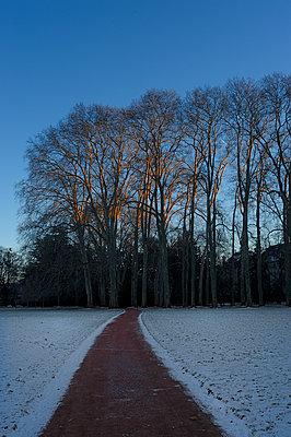 Winterliche Abendsonne - p567m1469213 von Ernesto Timor