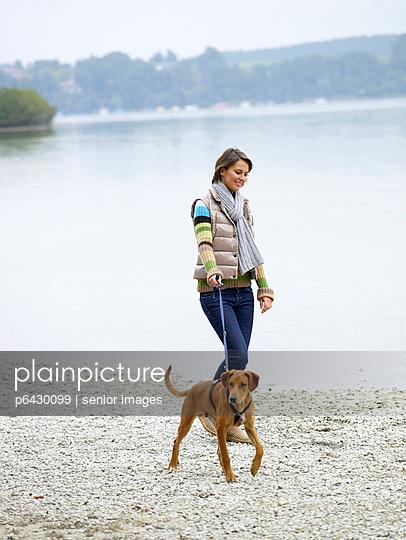 Frau geht am See mit Hund spazieren  - p6430099 von senior images
