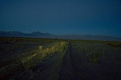 Berge am Horizont - p56711728 von Vincent Soyez