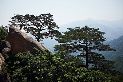 Korea, Seoraksan National Park - p1492m2223613 by Leopold Fiala
