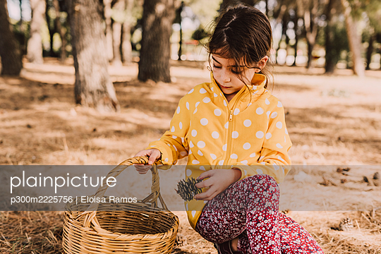 Girl kneeling while collecting pine cone in wicker basket at park - p300m2225756 by Eloisa Ramos