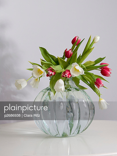 Tulpen - p2686938 von Clara Ritz