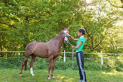 Riding horse - p1293m1138942 by Manuela Dörr