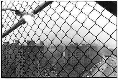Trellised - p6270234 by Hendrik Rauch