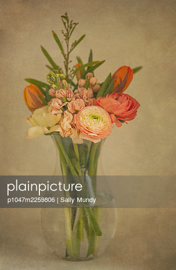 Glass vase full of beautiful spring flowers against fawn coloured background - p1047m2259806 by Sally Mundy