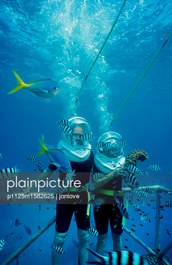 Tourists' dive with fish - p1125m1582625 by jonlove