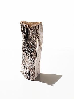 Log - p803m2286024 by Thomas Balzer