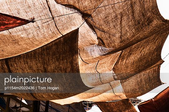 p1154m2022436 von Tom Hogan