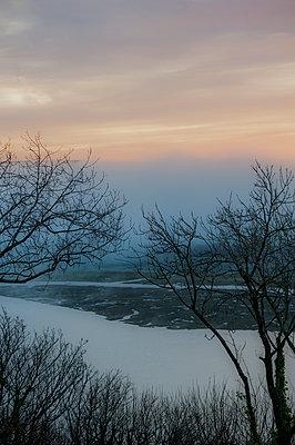 Overlooking misty estuary - p1047m967970 by Sally Mundy