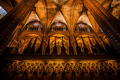 Cathedral of Barcelona - p253m1006755 by Oscar